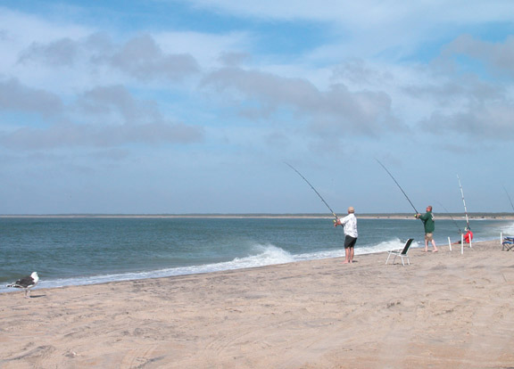 Outer Banks Fishing Report 11/10/08-Hatteras Island