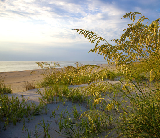 Hatteras Island: Free Things To Do On Hatteras Island