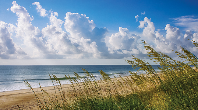 Ocean serenity, sea oats in bloom and clouds marching across the horizon in Rodanthe on Hatteras Island on the Outer Banks of North Carolina